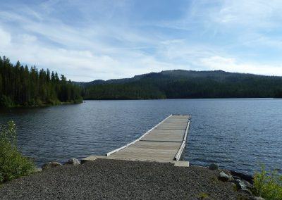 Olive Lake 3